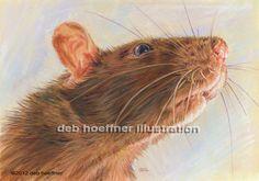 portrait-rat-nytimes