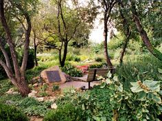 Garden of the Bible on 3 acres of land at Boys Town, NE grows over 150 different Biblical Plant Species listed in the Holy Scriptures.  My Mother and I use to walk and talk there.
