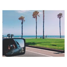 drives by the ocean.