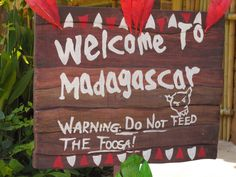 Madagascar party ideas