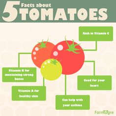5 facts about the amazing and diverse tomato! <3