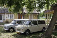 Parallel perfection in cream and grey at the International Mini Meeting, Hungary.