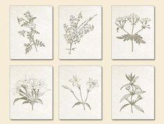 Estampes botaniques sépia plaques brunes par BeachHouseGallery