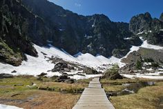 Are you looking for a fun hike to an alpine lake? Check out Lake Twenty Two!
