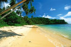 Empty beach, Samoa.