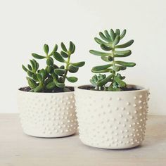 Maceta de cerámica.#pottery #handmade #maceta #plants #suculentas #deco #home #craft #design