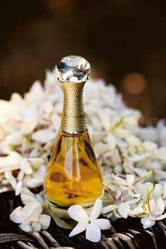 Jadore Dior Perfume Dior, Gucci Bamboo Perfume, Ari Perfume, Christian Dior, Dior Jadore, Dior Shop, Perfume Recipes, Essential Oil Perfume, Perfume Collection
