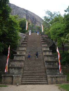 Pinnawala, O Orfanato dos Elefantes Sri Lanka, Stairs, Places, Travel, Elephants, Stairway, Staircases, Ladders