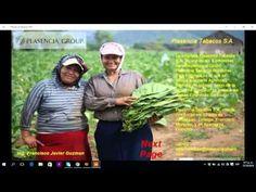 Tutorial   Project siena   ejemplo Aplicacion Plasencia Tabacos Honduras