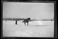 Anni Simberg suksilla hevosen vetämänä. Kansallisgalleria Hugo Simberg 1909.