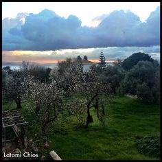 Latomi-Chios