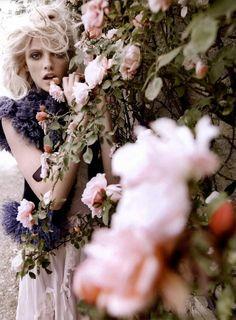 Derrière les fleurs