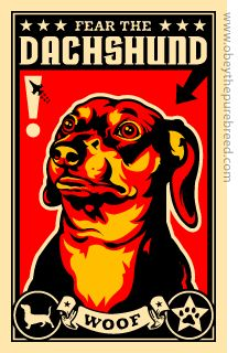 Fear the #dachshund ! #doxie #WeinerDog We have this magnet on our fridge -- Rob's sister gave it to us before we even had our doxie boy!