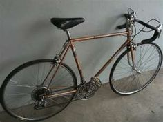 ten speed -  I had one.  Wasn't a great bike for the area I lived.  Gravel roads everywhere.  Yikes.
