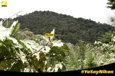 Jhonatan Londoño Mesa #YoSoyNikon  Nikon D3200