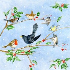Image Library Designs Original illustrations occasions Christmas greetings cards Christmas Greeting Cards, Christmas Greetings, Robin Bird, Library Design, Illustrations, Images, Birds, The Originals, Painting