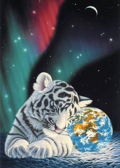 Ergebnisse zu: Magnetische | Tiger-Adventures.de
