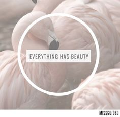 Find beauty in everything. The Blushed Nudes, You're Beautiful, Good Thoughts, Cute Quotes, Missguided, Latest Fashion For Women, Everything, Quotations, Peace