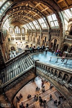 The Natural History Museum, is one of the finest examples of architecture in London - it is also a truely fascinating museum and completely FREE. A Must See on any London visit.