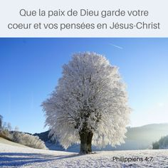 Philippiens 4: 7