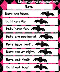 Bats: shared writing & reading