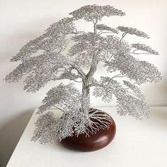 wirewood_trees's photo on SnapWidget