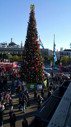 The Christmas tree at Pier 39