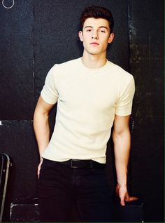 I literally love im and I cant wait to see him August 20th at hershey Park Stadium!!!! I Love You Shawn Peter Raul Mendes!!!!!!