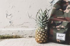 Do-whatever-you-want high-resolution photo from Pineapples on Unsplash.
