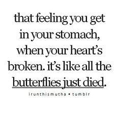 The butterflies died