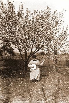 Banjo playing in orchard c.1913