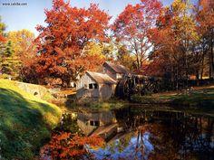 Nature: North Carolina Mabry Mill, picture nr. 5497