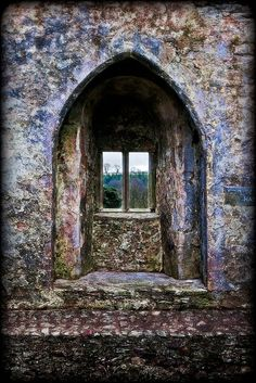 An Ancient View  Blarney Castle, County Cork, Ireland.