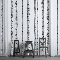 Birch Tree Wall Decals - 9 ft tall (Quantity of 5) by WallsNeedLove on Etsy https://www.etsy.com/uk/listing/123638995/birch-tree-wall-decals-9-ft-tall