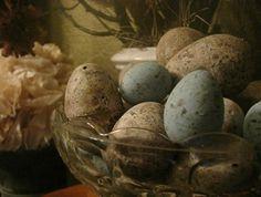 Plastic eggs painted