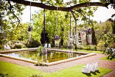 hanging birdcages with purple ribbon over a waiting pool Wedding Blog, Dream Wedding, Wedding Ideas, South African Weddings, Neo Victorian, Purple Ribbon, Bird Cages, Classic Beauty, Castle