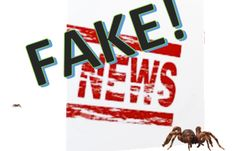 Let op: dit is #FAKENEWS! Je bent Gewaarschuwd! - ManagementPro