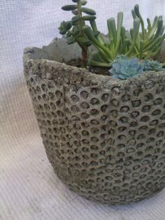 Modern hypertufa cement planter pot w/ succulent plants, LOCAL BAY AREA only via Etsy