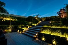 Browse images of space designs: Rural House, Lancashire. Find the best photos for ideas & inspiration to create your perfect home. Plant Lighting, Backyard Lighting, Outdoor Lighting, Architectural Lighting Design, Landscape Lighting Design, Light Architecture, Landscape Architecture, Outdoor Ponds, Rural House