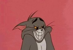 642e7a0cde465ad7a212b81b02e9c510  tom and jerry jerry oconnell - Collection of funny tom and jerry photos