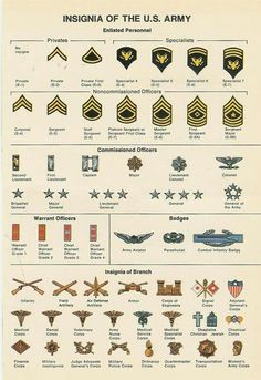 6 Best Images of Military Officer Rank Chart Printable - Army Officer Rank Insignia Chart, Army Military Rank Chart and Military Ranks and Insignia Army Girlfriend, Army Mom, Army Life, Military Love, Military Service, Military Spouse, Military Relationships, Military Tactics, Military Deployment