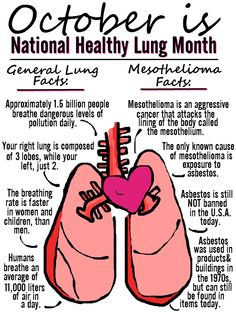 October is National Lung Health Month- What do you know about your lungs?