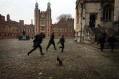 James Potter, Sirius Black, And Remus Lupin running inside from the rain. Taken by Peter Pettigrew Autumn Circa 1974 Storyboard, Gwendolyn Shepherd, Slytherin, Hogwarts, The Raven, My Academia, Dead Poets Society, His Dark Materials, Old Money