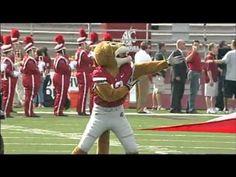 Washington State University Football 2012 - Written In the Stars