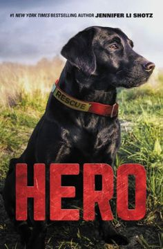 7th Grade Reading List, Reading Lists, Search And Rescue Dogs, Heroes Book, 12 Year Old Boy, Historical Fiction Books, Dog Books, Children's Books, War Dogs