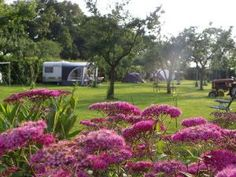 Glamping, Golf Courses, Travelling, Photos