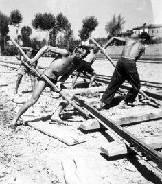 Cantiere - Posa dei binari della ferrovia - Operai al lavoroFazioli, Ernesto (1950)
