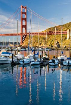 The Golden Gate Bridge In Early Morning - San Francisco Near St Francis Yacht Club San Francisco City, San Francisco Travel, San Francisco California, California Dreamin', Ponte Golden Gate, Golden Gate Bridge, San Fransisco, Photos, Pictures