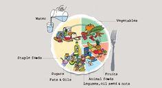 ¿Alguna vez te has preguntado si estás obteniendo los nutrientes adecuados de los alimentos que consumes? Es un error habitual pensar que la malnutrición significa solamente no disponer de suficientes alimentos. Las personas que no consumen alimentos suficientes pueden estar desnutridas, pero también los que consumen demasiados se enfrentan al mismo riesgo.