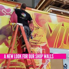 A new look for our shop walls! Installing large wall murals, more to come... Large Wall Murals, Wall Collage, Wall Art, Us Shop, Wall Design, New Look, Walls, Meet, Entertaining